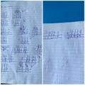 Courtney's amazing maths!