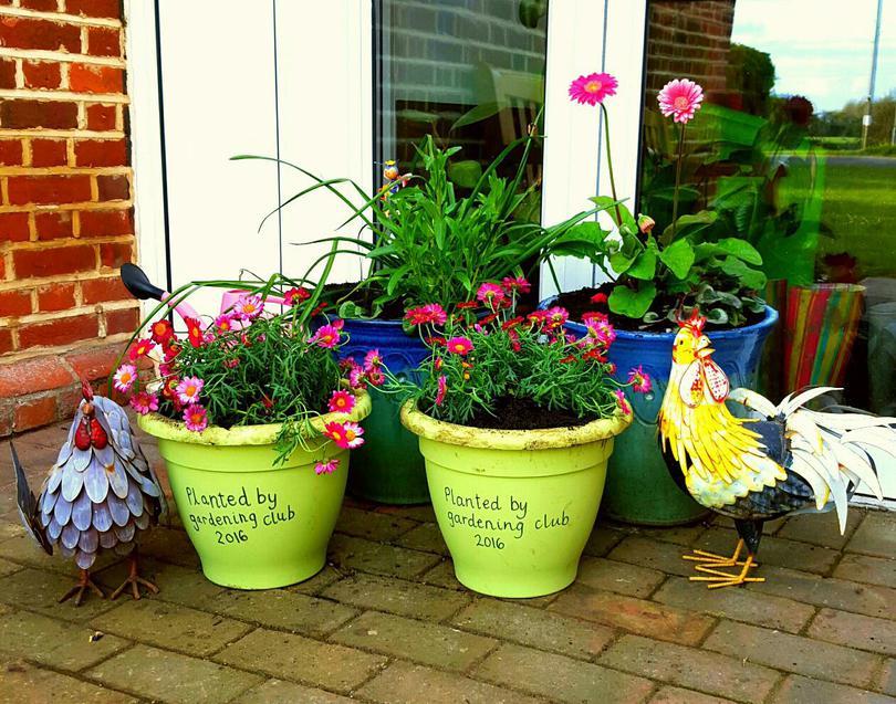 Gardening club.