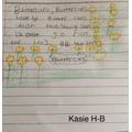 Kasie's Poem