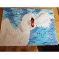 Emilia's Swan.jpg
