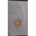 Esmee writes about plants.