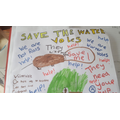 Faith Water Vole Poster