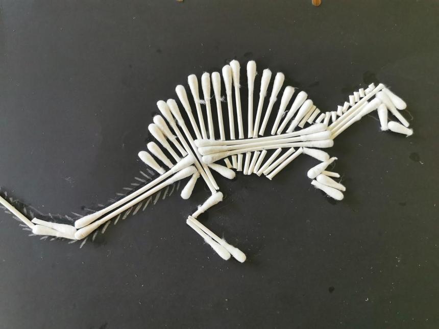 A dinosaur fossil by Tallulah