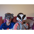 Tegan Badger Mask