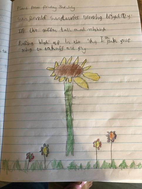 Flower poem by Charlie