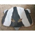 Verity's Badger Mask.jpg