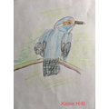 Kasie's Drawing