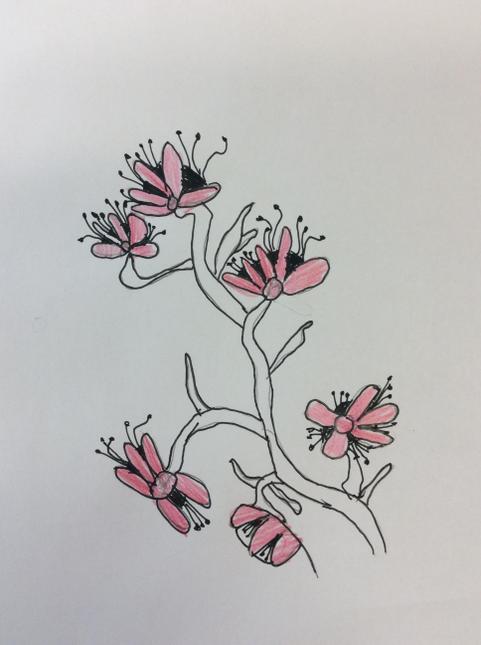 Alfie E's cherry blossom