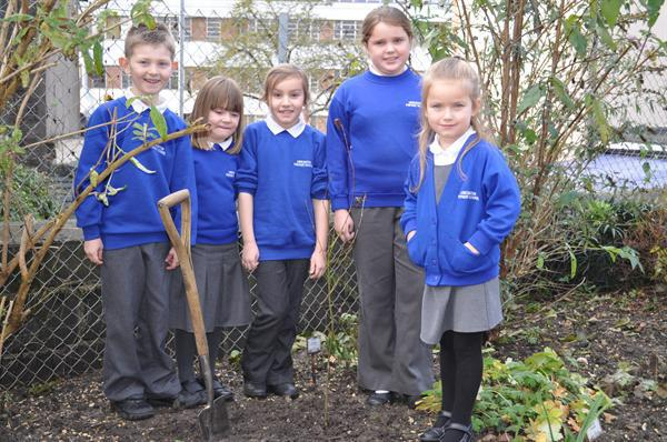 The Planting of our Jubilee Tree