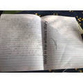 Wow!  Just look at Alfie PW's diary!