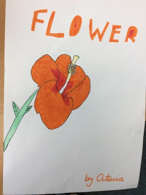 Octavia's flower