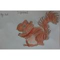 Zach's Squirrel.JPG