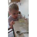 Zach's Science Experiment Part 1.JPG