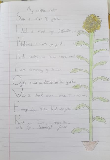 Harry's poem