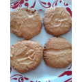 Dylan's Fossil Biscuits.jpg