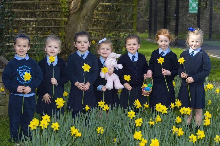 Beautiful Daffodils.