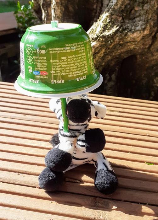 Well done! A fantastic umbrella for zebra!