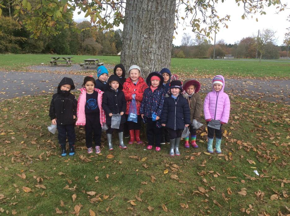 Gosford Forest Park trip