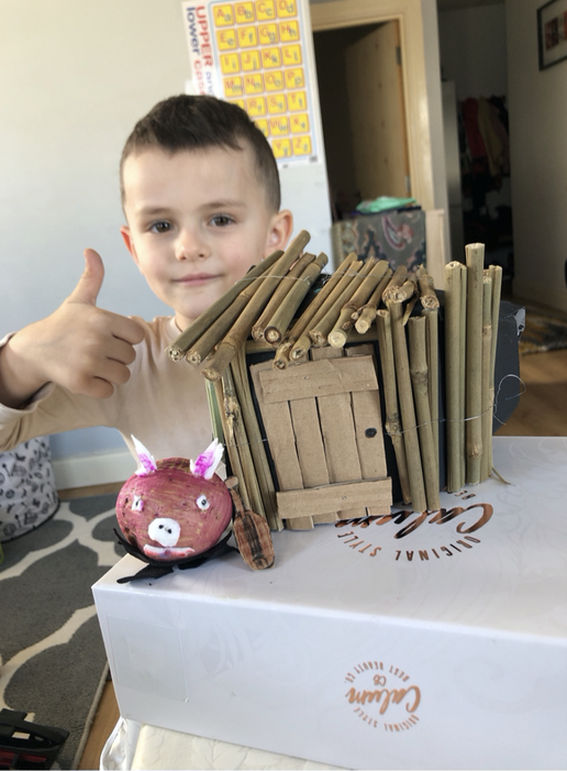 The Littte Pig And His Stick House