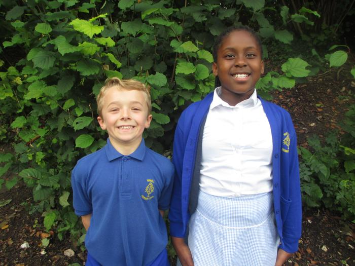 Year 5 Rep's