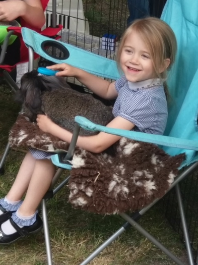 Pet handling at the Summer Fete 2018