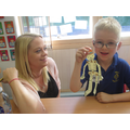 Year 1 Making moving skeletons