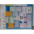 Year 6 posters