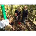 Minibeast hunting in the school grounds