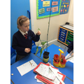 We are measuring the plants.