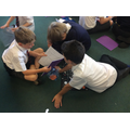 Sharing our Space quiz