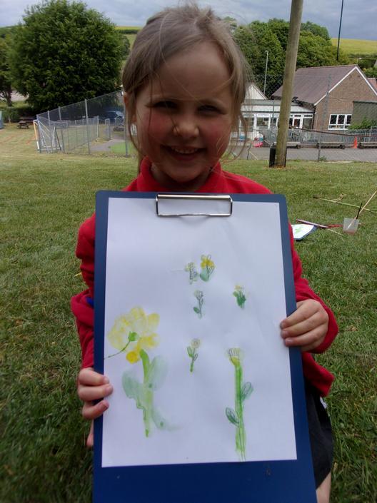 Botanical painting.