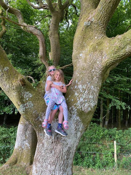 More tree climbing!