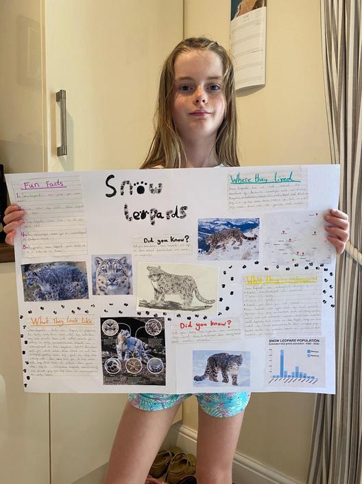 Sophia's poster