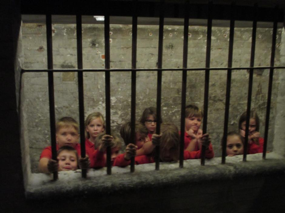 In the cells