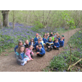 We went for a walk to see the bluebells