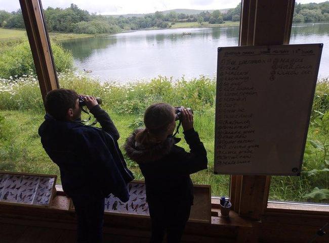 Bird Watching at Carsington 2019