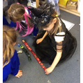 Sorting into groups