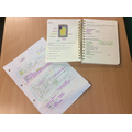 Independent science revision