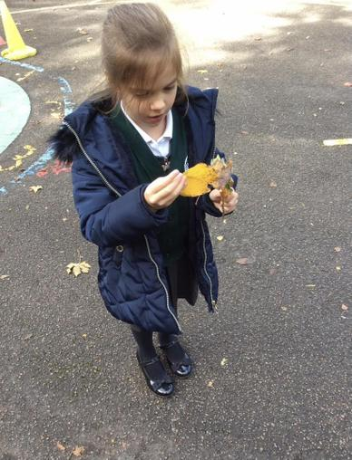 Making leaf kebabs to explore the changes of colour in Autumn.