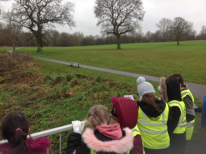 Senneley's Park Tree Walk
