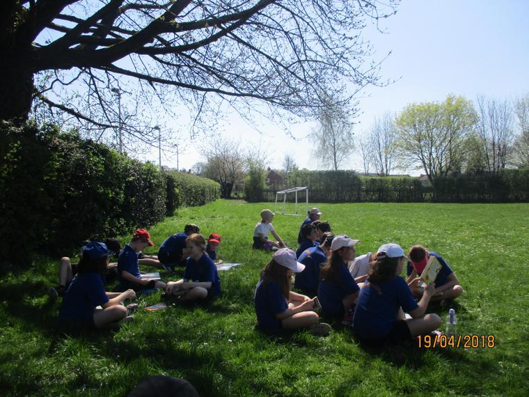 Maple class enjoying quiet reading outdoors.