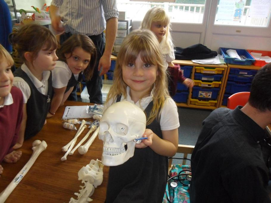 We loved looking at each part of the skeleton.