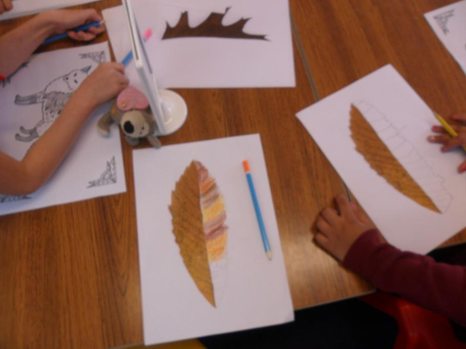 We looked closely at the shape of the leaf.