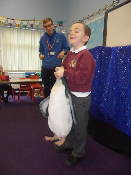 Penguins are really heavy!