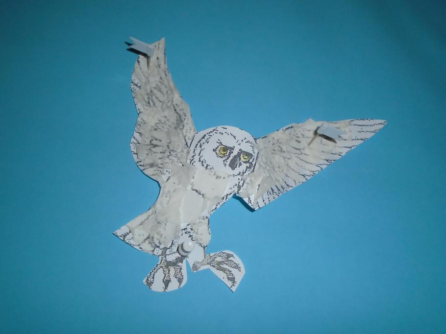 Snowy Owl collage