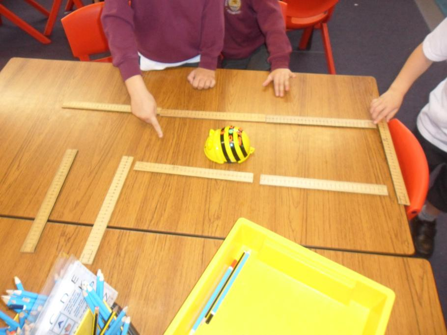 Can we program the bee?