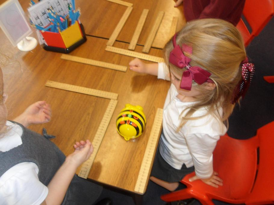 Using forward commands to move the bee.