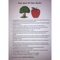 Jack's Isaac Newton factsheet!