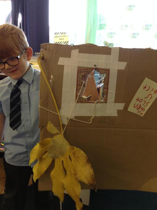 We built a a Sukkah