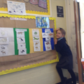 Habitats of the World display created by year 2